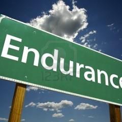 ENDURANCE…..
